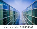 underside panoramic and... | Shutterstock . vector #317353661