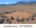 Nature Of Namibia  Africa