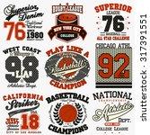 sport typography graphics logo... | Shutterstock .eps vector #317391551