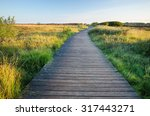 wooden walking path near morsum ... | Shutterstock . vector #317443271