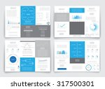 different infographic elements... | Shutterstock .eps vector #317500301