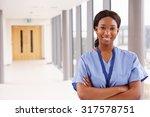 portrait of female nurse... | Shutterstock . vector #317578751