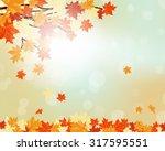 fall design. autumn maple... | Shutterstock . vector #317595551