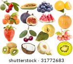 collection set of berry and... | Shutterstock . vector #31772683
