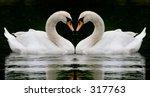 swan heart | Shutterstock . vector #317763