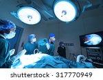 group of veterinarian doctor in ... | Shutterstock . vector #317770949