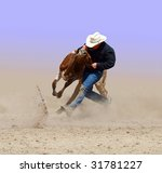 Cowboy Wrestling With A Steer....