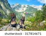 hiking boots with flowers on... | Shutterstock . vector #317814671
