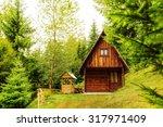 mountain hut deep inside green... | Shutterstock . vector #317971409
