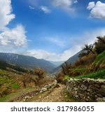 rural stone road on the... | Shutterstock . vector #317986055
