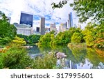 view of central park in new... | Shutterstock . vector #317995601