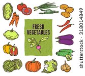 vegetable sketch icons set with ... | Shutterstock . vector #318014849