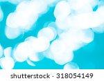 bokeh light background in the... | Shutterstock . vector #318054149