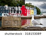 Selective Focus On A Seagull O...
