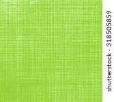 light green textured background ... | Shutterstock . vector #318505859