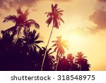 coconut palm tree silhouettes... | Shutterstock . vector #318548975