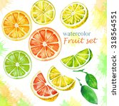 citrus slices watercolor. | Shutterstock . vector #318564551