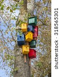 Colorful Birdhouses On A Tree