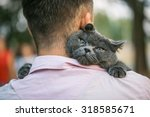 Stock photo close up view of man holding a cat 318585671