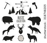 hand drawn wilderness animals... | Shutterstock . vector #318748205