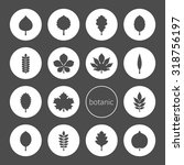 vector illustration  black... | Shutterstock .eps vector #318756197