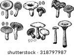 mushrooms  mushrooms vector  ... | Shutterstock .eps vector #318797987
