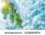Winter Background With Snow...