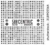 vector set of isolated centric... | Shutterstock .eps vector #318905564