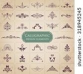 calligraphic design elements  ... | Shutterstock .eps vector #318945245