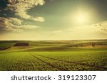 agricultural landscape with...   Shutterstock . vector #319123307