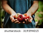 organic fruit and vegetables.... | Shutterstock . vector #319394015