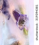 Small photo of Frozen fresh beautiful flower of aconite and air bubbles in the ice cube