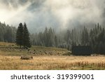 Sheep Pasture In The Valley In...