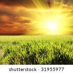 field | Shutterstock . vector #31955977