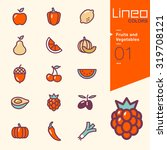 lineo colors   fruits and... | Shutterstock .eps vector #319708121