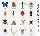 set of insects flat style... | Shutterstock .eps vector #319788404
