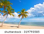 palm trees on the beach in key... | Shutterstock . vector #319793585