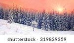 Ukrainian Carpathians Snowy...