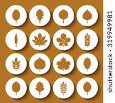 vector illustration  set of...   Shutterstock .eps vector #319949981