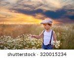 beautiful little boy in daisy... | Shutterstock . vector #320015234