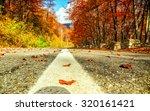 road in autumn beech landscape... | Shutterstock . vector #320161421