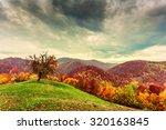 colorful autumn landscape in... | Shutterstock . vector #320163845