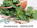 Nettle On The Table