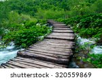 wooden path in national park in ... | Shutterstock . vector #320559869