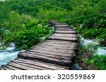 wooden path in national park in ... | Shutterstock . vector #320559869