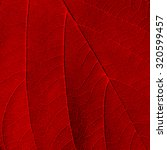 Red Leaf Texture Background
