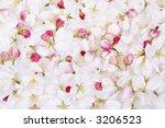Cherry Blossom Petals Background