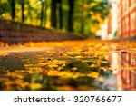 Autumn In The City  Puddle In...