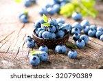 blueberry. freshly picked... | Shutterstock . vector #320790389