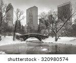 Central Park After A Snowstorm...